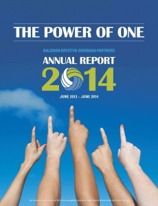The Power of One BKS Annual Report 2014