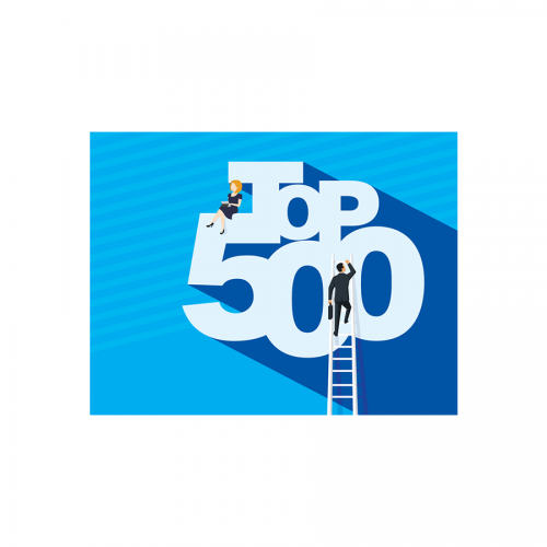 <i>Business Observer</i> Top 500